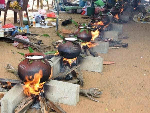 Siccità in Sri Lanka-5