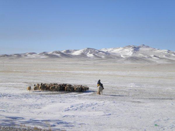 Pasqua in Mongolia-2