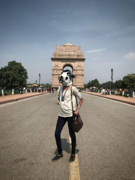 Donne mascherate da vacche in India-1