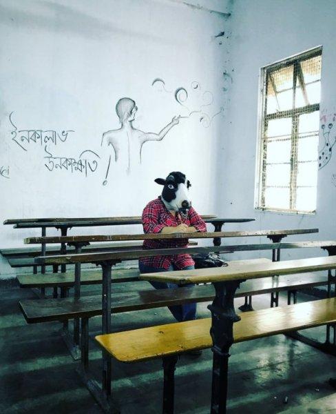 Donne mascherate da vacche in India-2