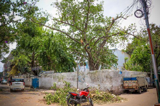 Cyclone Amphan hits Kolkata