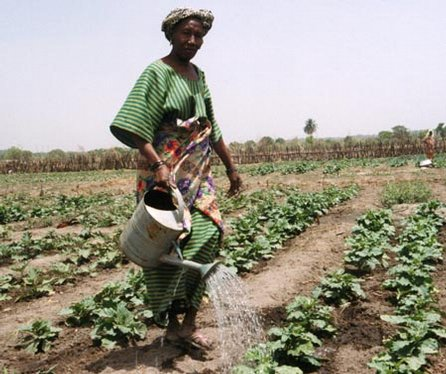 importation of agricultural products from africa to the eu Commodities subject to import quotas the commissioner,  presidential proclamation 8334 extended the us-israel agreement on trade in agricultural products.