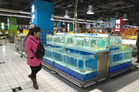 China no fresh or live fish in beijing might signal fresh for Live fish food